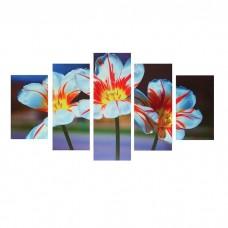 Модульная картина на холсте с подрамником Пёстрые тюльпаны 1325235