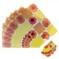 Набор салфеток кухонных Желтые цветы 6 шт 42х27 см, 6 шт 9х9 см 1007086